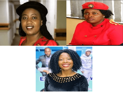 MDC Alliance UK & Ireland Province demands release of  MP & 2 Youth Assembly leaders